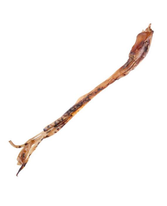 Ostrich Kierie Stick