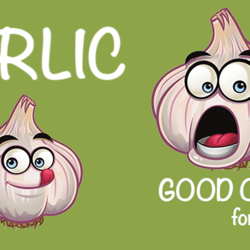 Garlic – Good or Bad for our Pets?