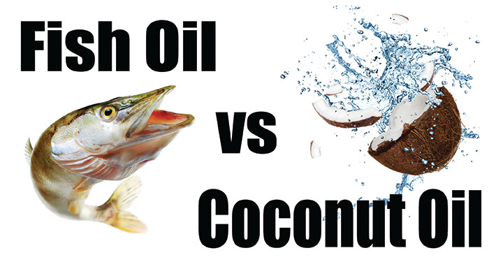 Coconut oil or fish oil what is best vondi 39 s for Whats fish oil good for
