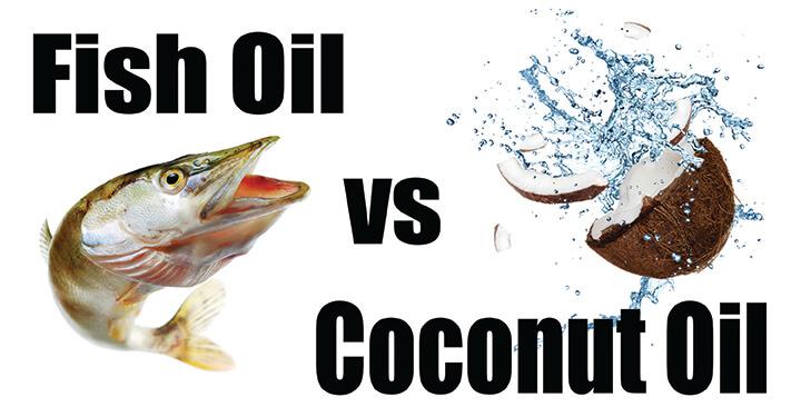 Coconut oil or fish oil what is best vondi 39 s for Salmon oil vs fish oil