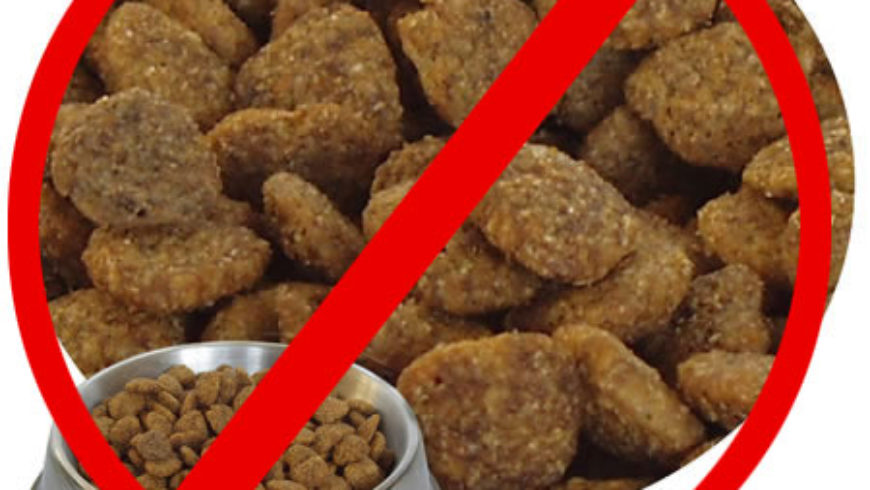 Kibble/pellets is NOT an optimal diet