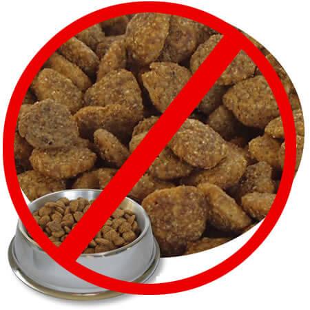 Kibble/pellets is NOT an optimal diet