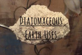 Diatomaceous earth – who can pronounce it, who knows its benefits?