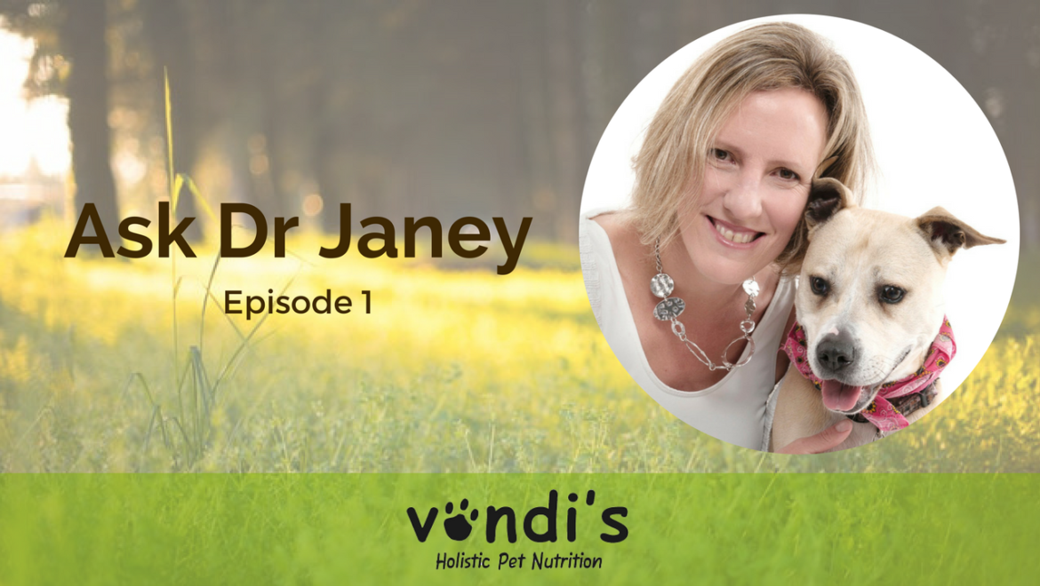 Ask Expert Vet Dr Janey
