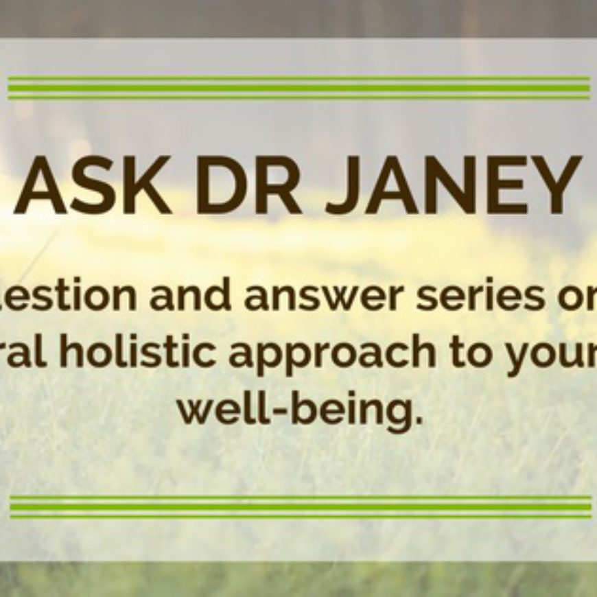 Dr Janey Pet Health Summer Series – Episode 9: The #1 health risk of summer!