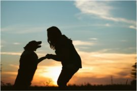 Paul on Smile FM: RESCUE a cat or dog…& you save YOUR soul