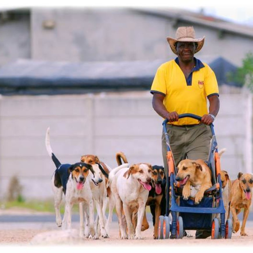 Mdzananda Animal Clinic is in the community, for the community